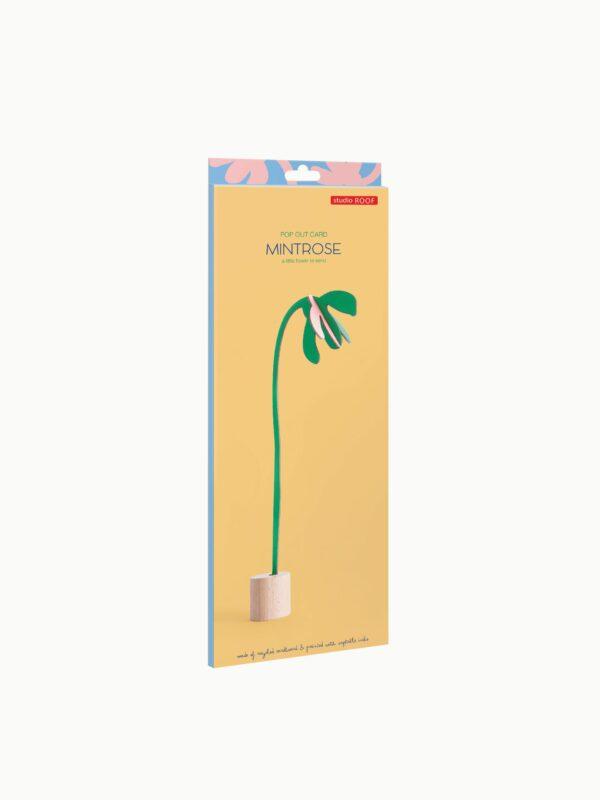 mintrose-card-studio-roof