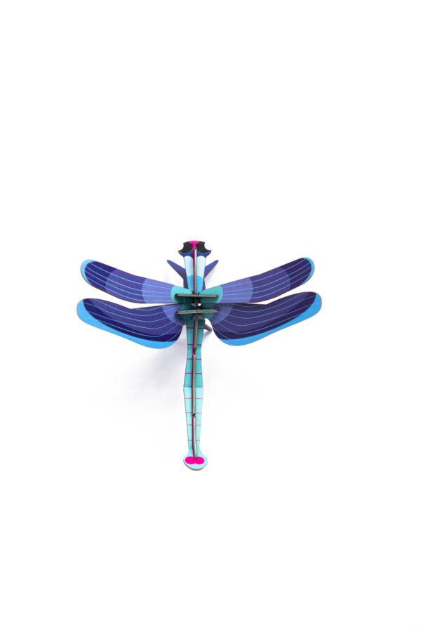 sapphire dragonfly studio roof